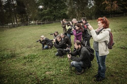Workshop Kreativní fotografie 2 – Licoměrsko